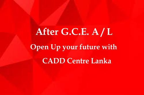 After G.C.E. A/L